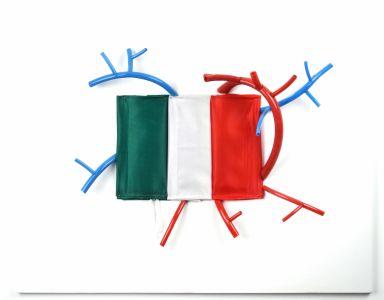 Corrado Bonomi Cardio concettuale ironico tricolore Italia cardio