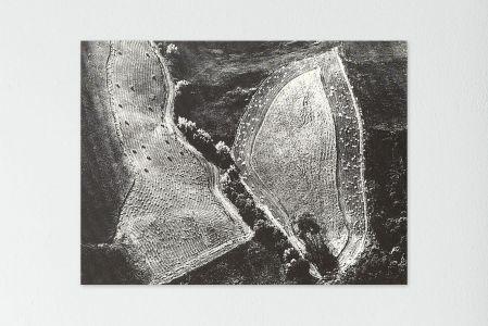 Mario Giacomelli paesaggio natura bianco nero